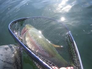 alaska-fishing-009