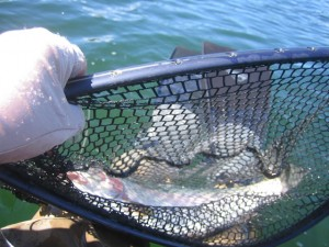 alaska-fishing-013